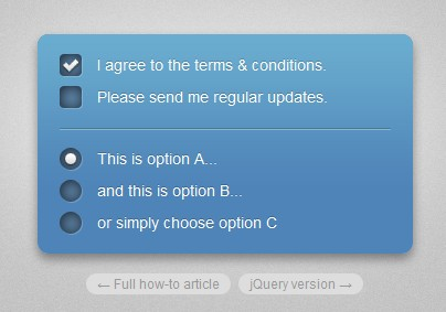 Fancy checkboxes and radio buttons-fancyCheckboxes