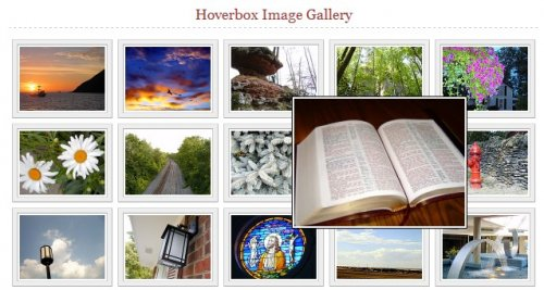 Css Hover Image Gallery-HoverBox