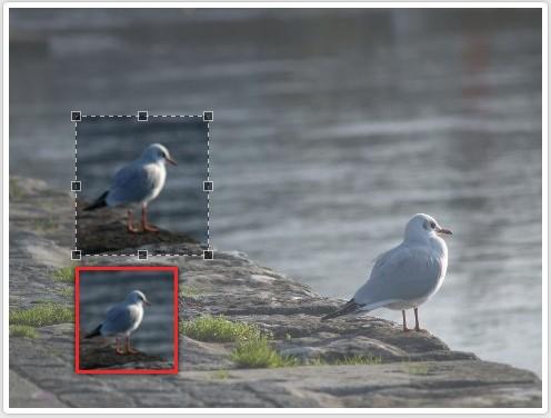 Plugin jQuery que permite cortar fotografias-CropImages