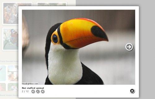 Free Photo albums generator-VisualLightBox