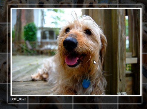 How to create an Images thumbnails in a grid with zoom-jPhotoGrid