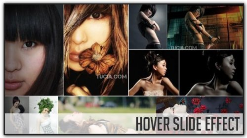 Photo Gallery with Hover Slide javascript Effect with jQuery - HoverSlide