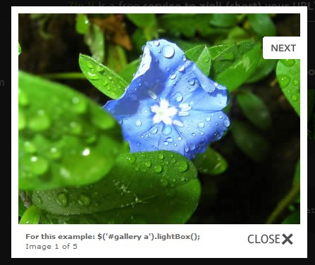Overlay images on the current page - jQuery lightBox plugin